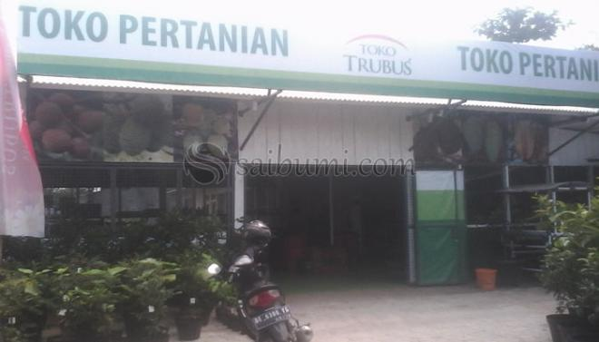 Toko Pertanian Trubus Hadir Di Bandar Lampung Untuk Pencinta Tanaman
